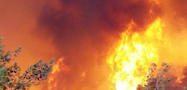 השרפה בכרמל, את מי תובעים? ומהם זכויות הנפגעים